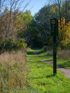 Ottawa - Walk in Gatineau Park @ Gatineau Park | Chelsea | Québec | Canada